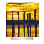 Seagull Sunset Shower Curtain