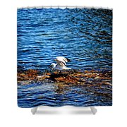 Seagull Wings Lifted Shower Curtain