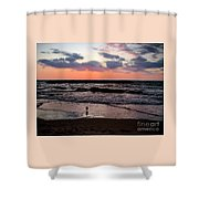 Seagull With Sunset Shower Curtain
