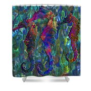 Seahorse 2 Shower Curtain by Jack Zulli
