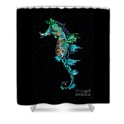 Seahorse Shower Curtain by Lynn Jackson