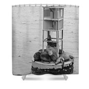 Seal Nap Time Black And White Shower Curtain