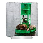 Seal Nap Time Shower Curtain