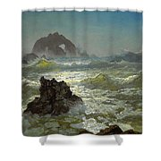 Seal Rock California Shower Curtain