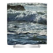 Seal Surfing Waves Shower Curtain
