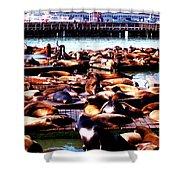 Seal Wharf Shower Curtain