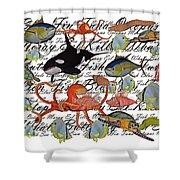 Sealife Dreamland IIi Shower Curtain