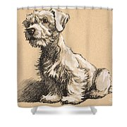 Sealyham Shower Curtain