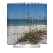 Seaoats And Beach Shower Curtain