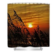 Seaoats And Sunrise Hatteras Island 1 7/31 Shower Curtain