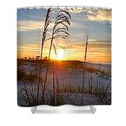 Seaoats Sunrise Shower Curtain