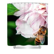 Searching Pink Flower Shower Curtain