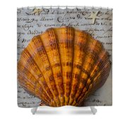 Seashell And Words Shower Curtain