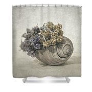 Seashell No.2 Shower Curtain