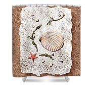 Seashell With Pearls Sea Star And Seaweed  Shower Curtain