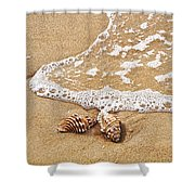 Seashells And Lace Shower Curtain