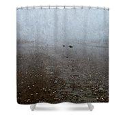 Seashells On Foggy Beach Shower Curtain
