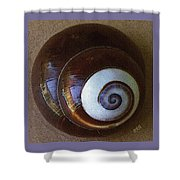 Seashells Spectacular No 26 Shower Curtain