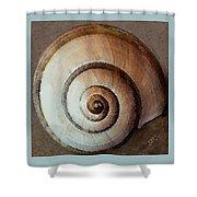 Seashells Spectacular No 34 Shower Curtain
