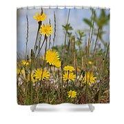 Seaside Flora Shower Curtain