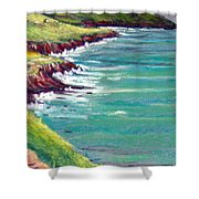 Seaside Path Shower Curtain