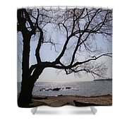 Seaside Tree In Connecticut Long Island Sound Shower Curtain