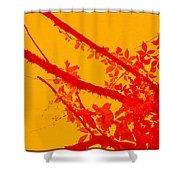 Season Of Colours Shower Curtain
