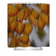 Seasonal Shiver Shower Curtain