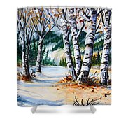 Seasonal Transition Shower Curtain