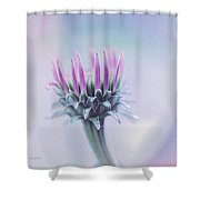 Seasons Journey Shower Curtain