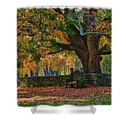Seated Under The Fall Colors Shower Curtain