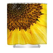 Seattle Sunflower Close-up Shower Curtain