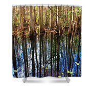 Sebring Cypress Swamp Reflection Shower Curtain