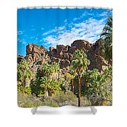 Second Largest Stand Of Fan Palms In The World In Andreas Canyon In Indian Canyons-ca Shower Curtain