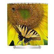 Secret Lives Of Sunflowers Shower Curtain