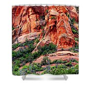 Sedona Perspective Shower Curtain