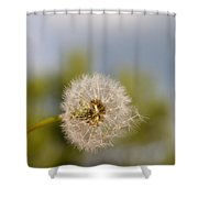 Seed Lift-off Shower Curtain