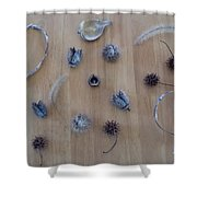 Seedpods Shower Curtain
