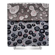 Seeds Of Life Shower Curtain