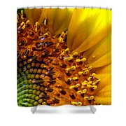 Seeds Of Sunshine Shower Curtain