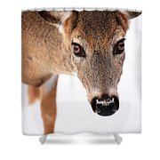 Seeing Into The Eyes Shower Curtain