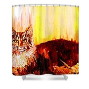 Seeker Of The Unknown Shower Curtain