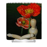Seeking A Yellow Brick Road Poppy Number Two Shower Curtain