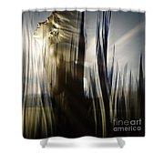 Seeking The Light Shower Curtain