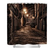 Segovia Predawn Shower Curtain by Joan Carroll