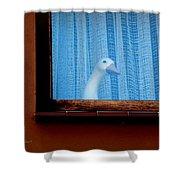 Sembach Window Shower Curtain