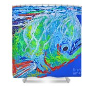 semi abstract Mahi mahi Shower Curtain