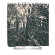Sending Light And Warmth To You Shower Curtain