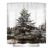 Seney Silver And Chocolate Shower Curtain