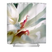 Sentinel Enter The White Peony  Shower Curtain